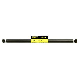Obelisc R HPLC-Säule 3.2x10mm 5µm 100A